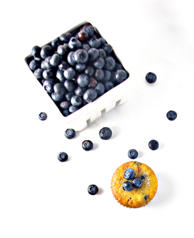 Blueberries and their paleo muffin - so happy to be together! | spiritedandthensome.com