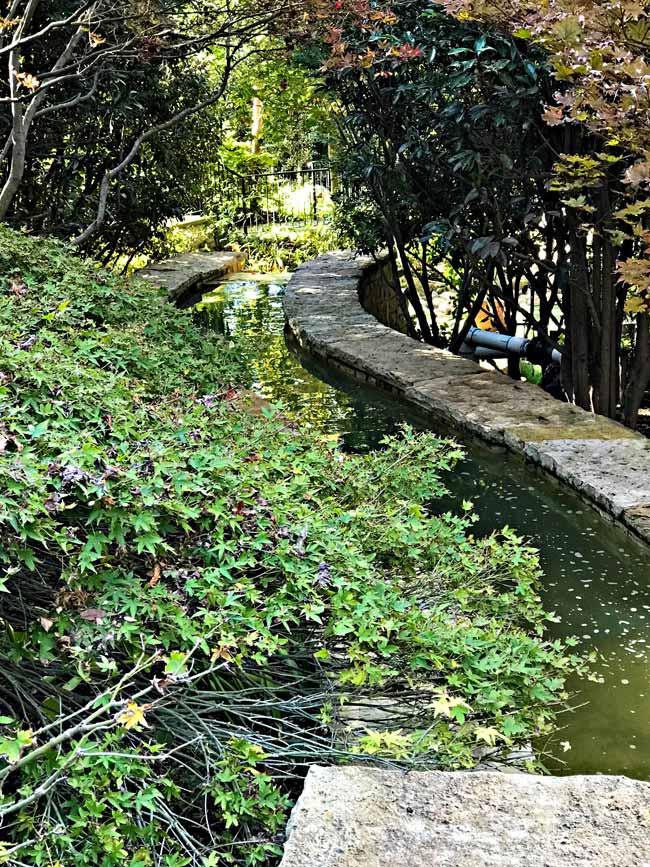 River at Dallas Arboretum and Botanical Garden! | spiritedandthensome.com