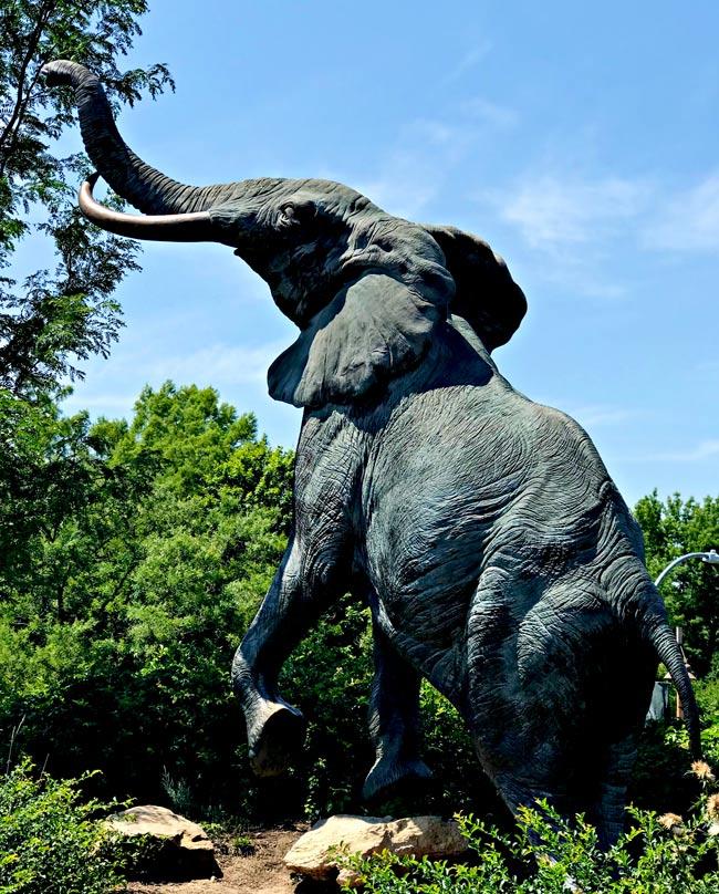Elephant Sculpture at St. Louis Zoo in S. Louis, Missouri!   spiritedandthensome.com