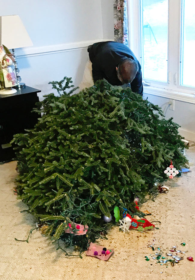 Spirited and Then Some Christmas tree falls over for a second time! | spiritedandthensome.com
