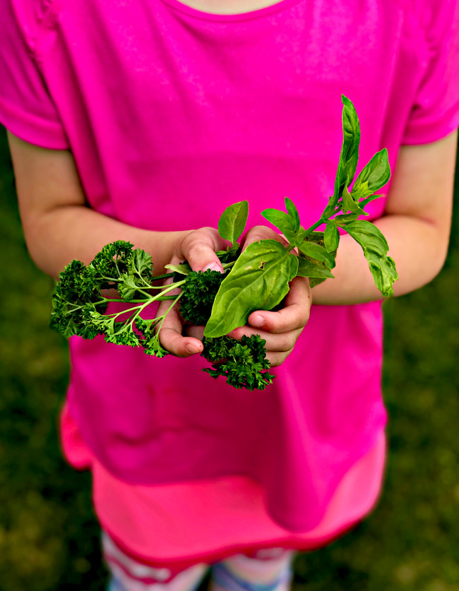 Toodle holding herbs from her garden! | spiritedandthensome.com