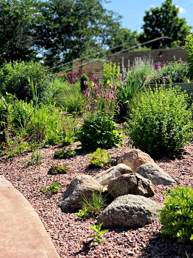 Beautiful landscaping at Reiman Gardens in Ames, Iowa! | spiritedandthensome.com