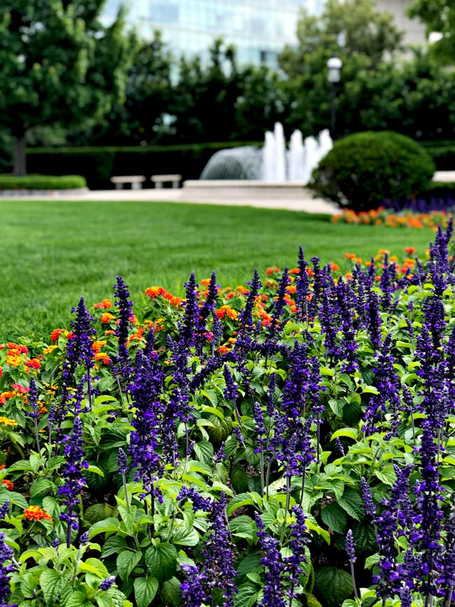 Beautiful landscaping at the World Food Prize in Des Moines, Iowa! | spiritedandthensome.com