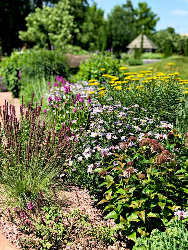 Gorgeous flora and fauna at Reiman Gardens in Ames, Iowa! | spiritedandthensome.com